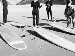 surffaus-aallot-surffilauta